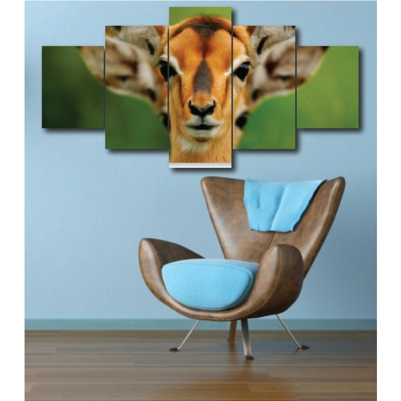 Wall Frames 5 Pieces Set Canvas - Digitally Printed Wall Canvas  post-291