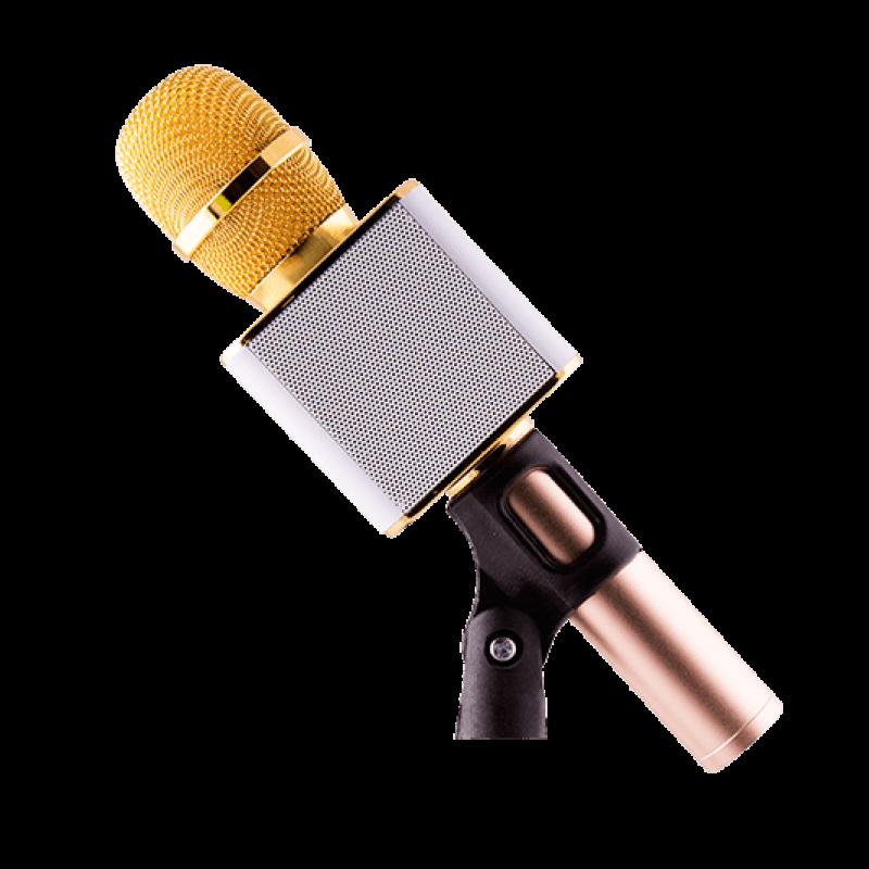 Audionic Mehfil MH-201 Speaker+Karoke Mic