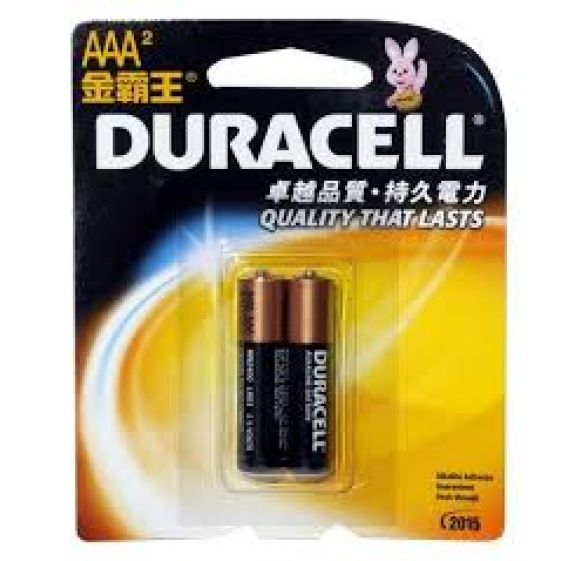 Duracell AAA Size Alkaline Battery (Pack of 2)