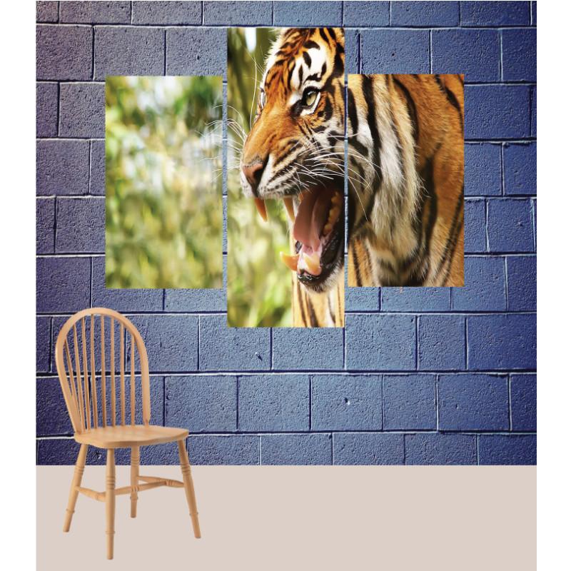 Wall Frames 3 Pieces Set Canvas – Digitally Printed Wall Canvas TJ-150